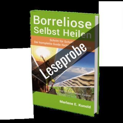 BSH-Book Leseprobe
